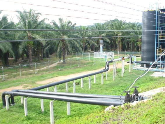 biogas limbah sawit